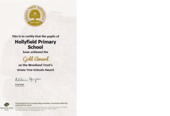 Gold Award Certificate