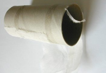 cardboard end of a toilet paper roll